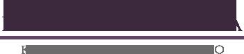 Platmed logo